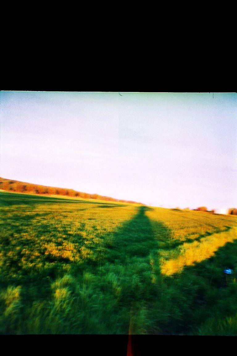 Lomo Diana TB April 2015_108